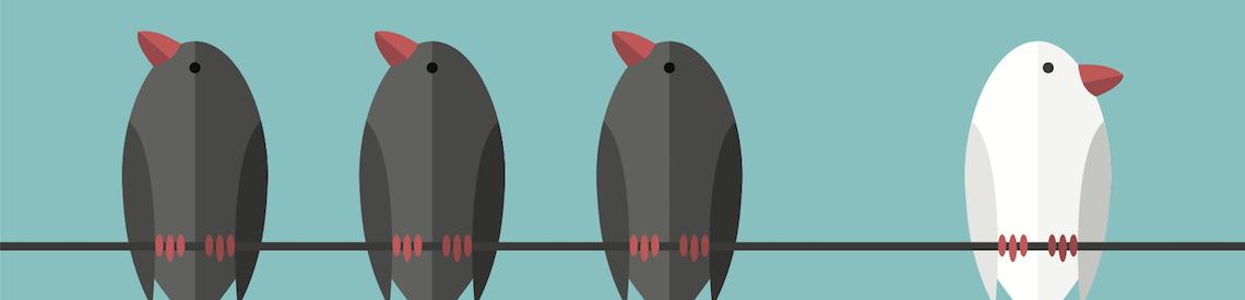 Apprenticeships birds